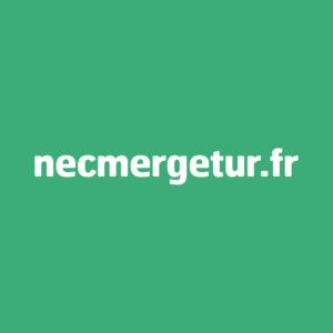 LOGO WHATSAPP - NEC MERGETUR
